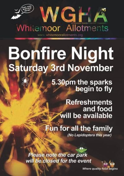Bonfire night 2018